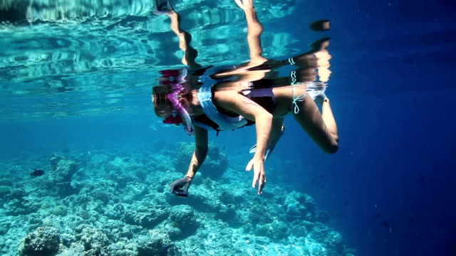 Capturing underwater beauty for great memories
