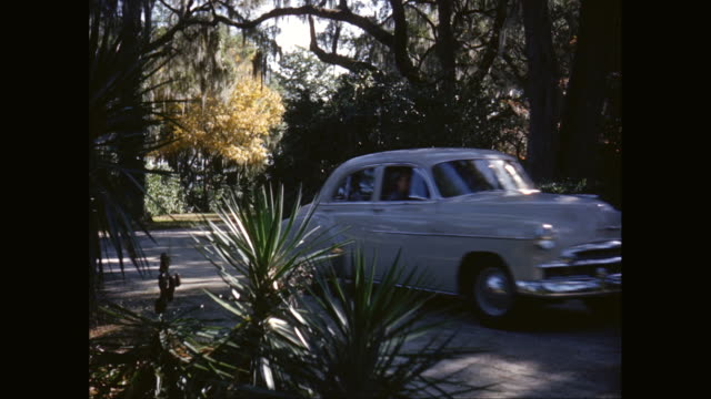 ms car driiving on rural road, trees covered in spanish moss / savannah, georgia, united states - epiphyte stock videos & royalty-free footage