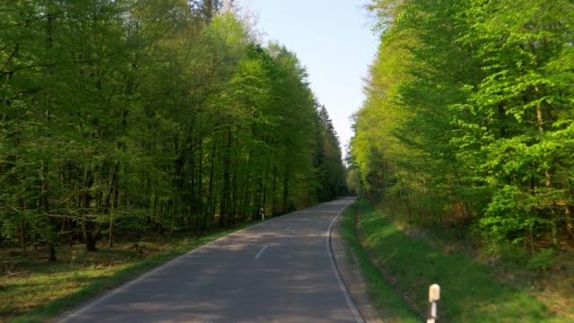 car drive through green spring forest - bavaria stock videos & royalty-free footage