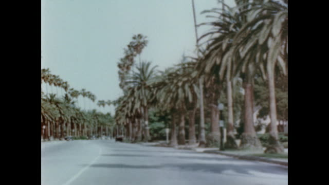 1947 car drives a palm tree lined street - beverly hills california stock-videos und b-roll-filmmaterial