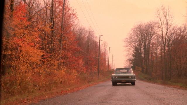 vídeos de stock e filmes b-roll de a car drives along a road lined with autumn trees. - grade de radiador