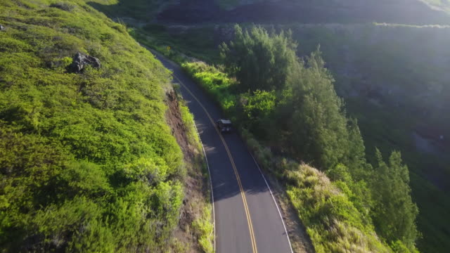 car drives on lush mountain road, aerial - ドライブ旅行点の映像素材/bロール