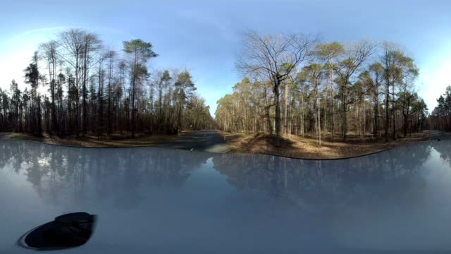 Car drives through the forest, equirectangular panoramic, 360 VR, 360VR, monoscopic, 360 Footage, VR