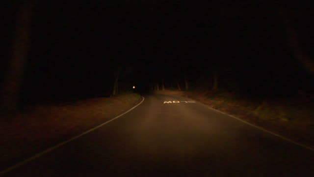 ws car pov driving down road at night through epping forest/ london, england - country road stock videos & royalty-free footage
