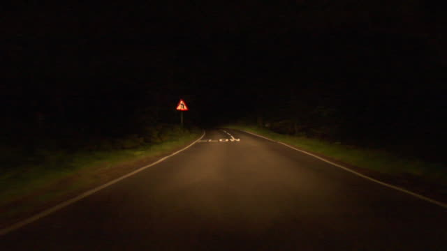 WS Car POV driving down road at night through Epping Forest/ London, England