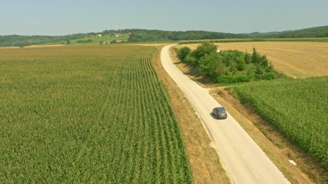 vídeos y material grabado en eventos de stock de vista aérea de conducción en el campo - maíz zea