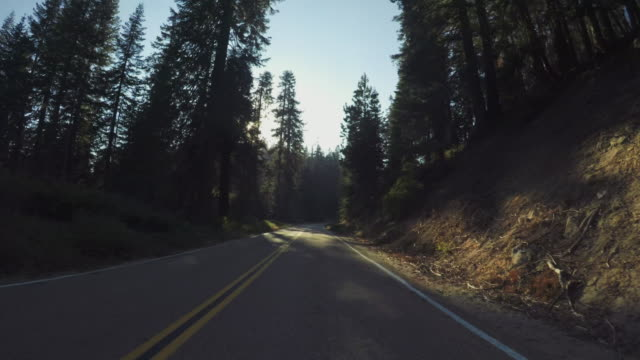 pov car driving in yosemite national park, tioga pass - mountain stock videos & royalty-free footage