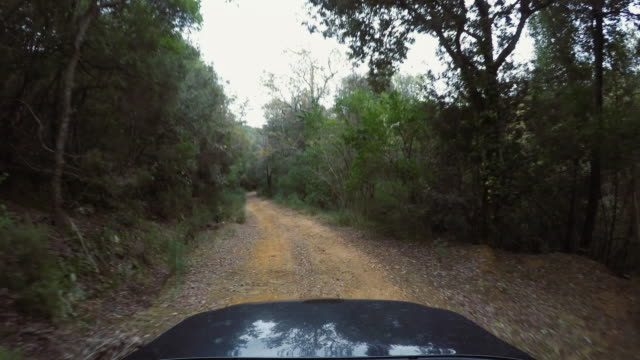 pov car driving offroad: on a dirt road - off road racing stock videos & royalty-free footage