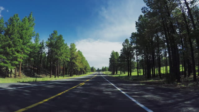 pov car driving on a mountain pass in the usa - car on road stock videos & royalty-free footage