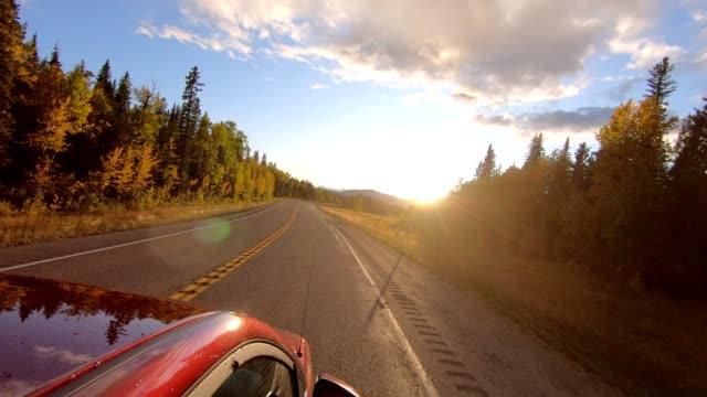 vidéos et rushes de véhicule conduisant sur la route d'asphalte dans la forêt d'automne au coucher du soleil - moving down