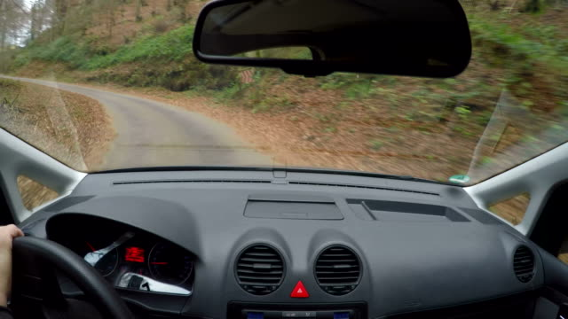 pov, car driving on country road - フロントガラス点の映像素材/bロール
