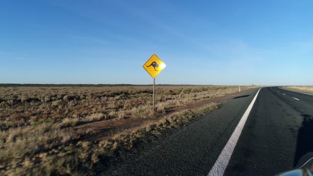 stockvideo's en b-roll-footage met car pov driving on desert highway towards kangaroo road-sign - tweebaansweg