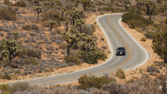 Car Driving on Open Road Through Joshua Tree, California