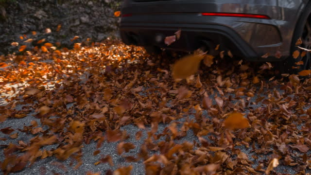 car driving on road covered with colorful autumn leaves - super slow motion stock videos & royalty-free footage