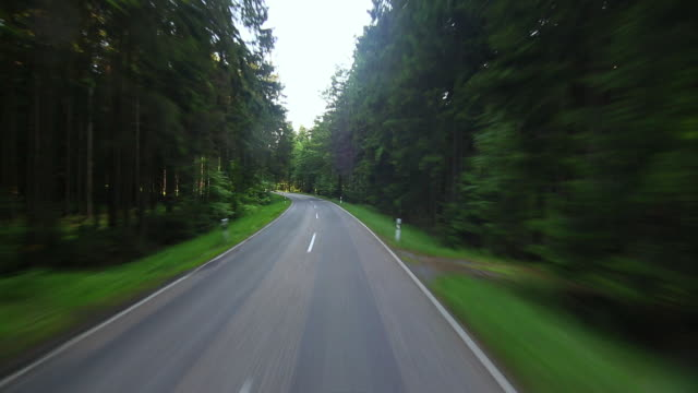 pov car driving on road in green forest - thoroughfare stock videos & royalty-free footage