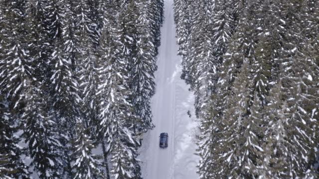 Luchtfoto auto rijden op besneeuwde weg door vuren bos