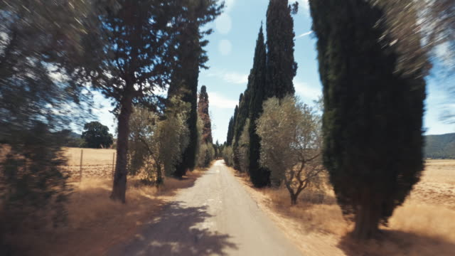 pov car driving on the roads of tuscany, italy - moving process plate stock videos & royalty-free footage