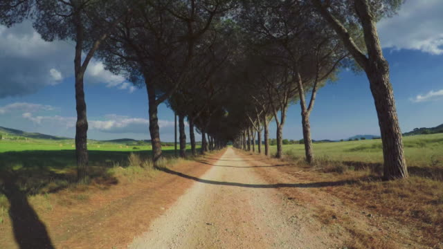 pov car driving on the roads of tuscany, italy - point of view video stock e b–roll