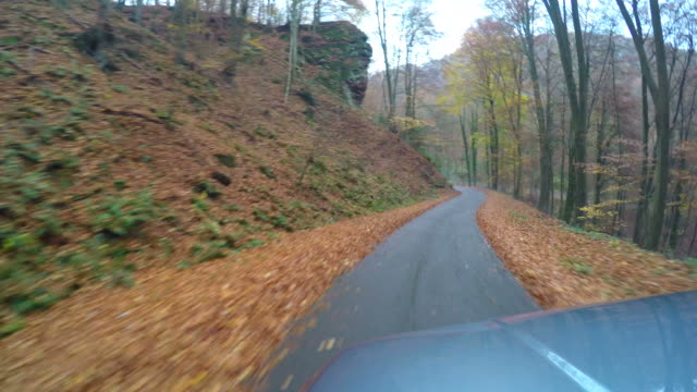 car driving over country road in autumn - autoperspektive stock-videos und b-roll-filmmaterial