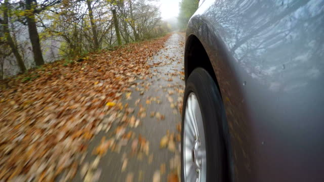 car driving over country road in autumn