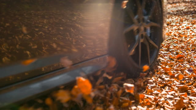 car driving through autumn forest - wheel stock videos and b-roll footage