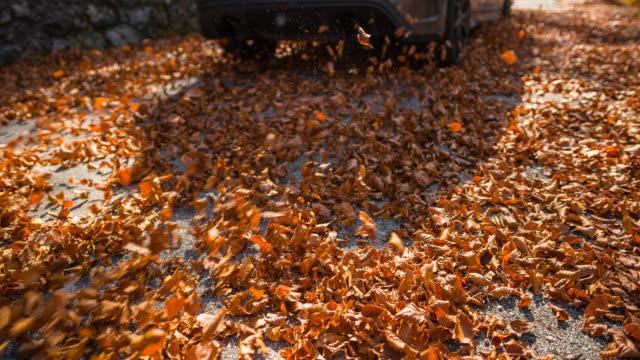 stockvideo's en b-roll-footage met auto rijden via herfst bladeren - verwonderingsdrang