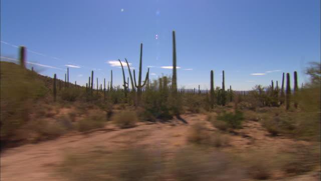 side pov, car driving through desert, new mexico, usa - cactus stock videos & royalty-free footage