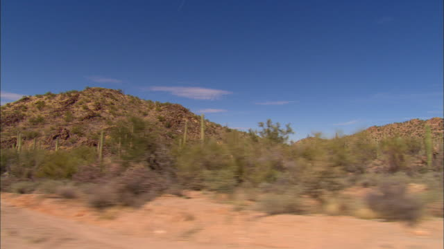side pov, car driving through desert, new mexico, usa - cactus stock videos & royalty-free footage