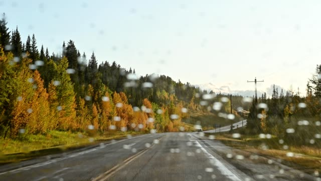 car driving with raining on highway in autumn forest at banff national park - motivation stock videos & royalty-free footage