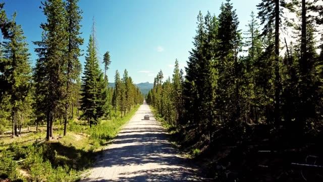 vidéos et rushes de voiture dans la forêt de l'oregon conduisant dans une route sale - 4x4