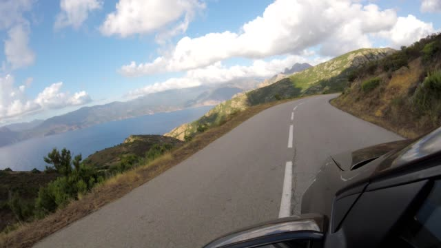 car on corsican country road in summer - pinaceae stock videos & royalty-free footage