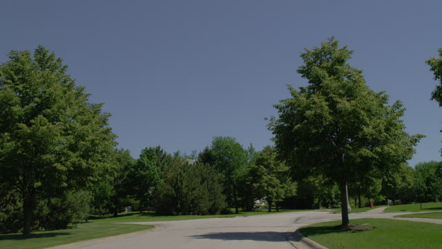 WIDE car POV on suburban residential street lined with green trees, Lake Forest, Illinois
