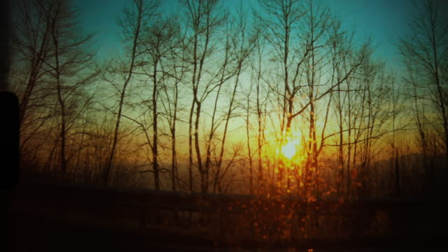 car passenger view from the window: traveling at sunset - side view video stock e b–roll