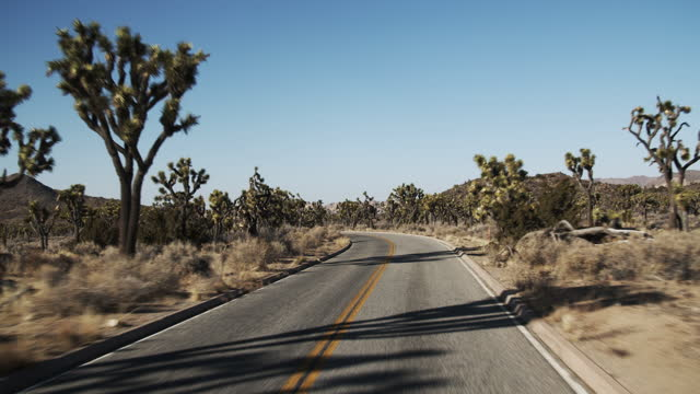 car point of view driving through the desert. - joshua tree national park stock videos & royalty-free footage