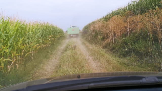 car point of view. farmer driving through the corn field during harvesting behind a tractor with a trailer going to the field at harvest season. agricultural occupation. farm owner. - tractor stock videos & royalty-free footage