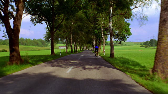 Car point of view following cyclist on road lined by trees, through countryside / Bavaria, Germany