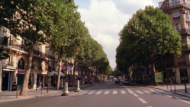 Car point of view in traffic on tree-lined street past old buildings + stores / Paris, France