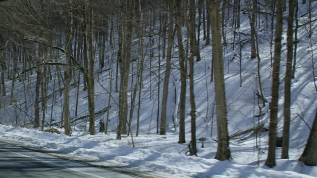 car point of view of mountain road passing by forest during winter - winter点の映像素材/bロール