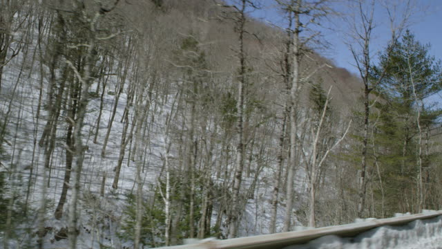 car point of view of tree covered mountain during winter - winter点の映像素材/bロール