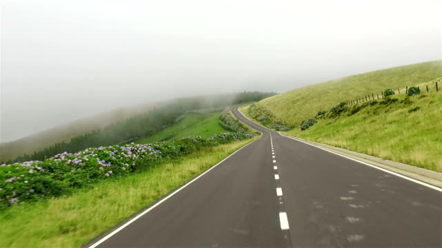 Car point of view on country road - drive on Flores Island on Azores / Portugal