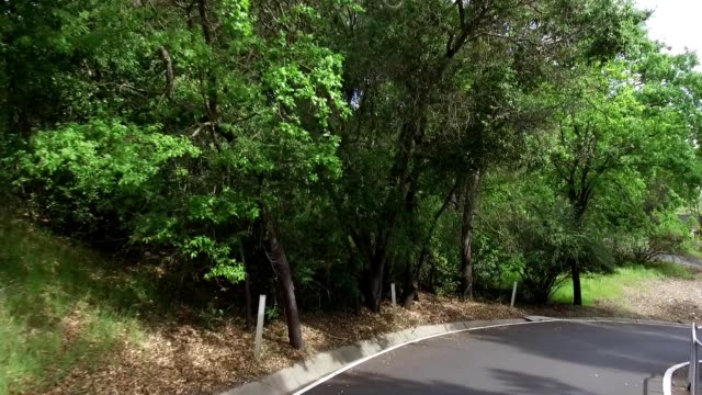 vidéos et rushes de car point of view traveling down winding side streets in the san francisco bay area lafayette california april 19 2019 - california street san francisco