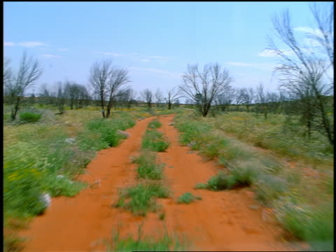 Car point of view winding red dirt road through brush / Northern Territory, Australia