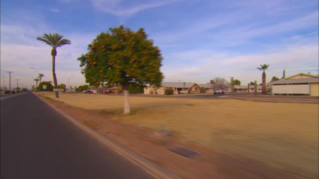 vídeos de stock, filmes e b-roll de 3/4 rear pov, car riding through suburban area, tucson, arizona, usa - fan palm tree