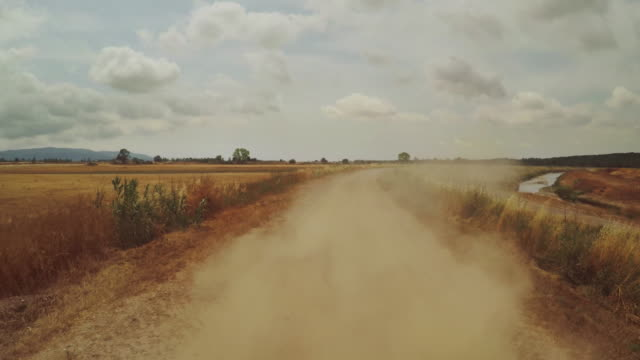 car speeding offroad in the wild: rear view of dirt road and dust - strada in terra battuta video stock e b–roll