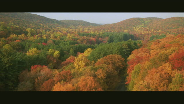 AERIAL TS WS TD Car traveling on highway through woods in fall colors