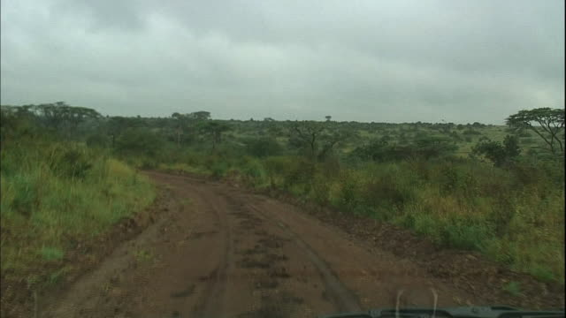 A car trundles along a muddy road.