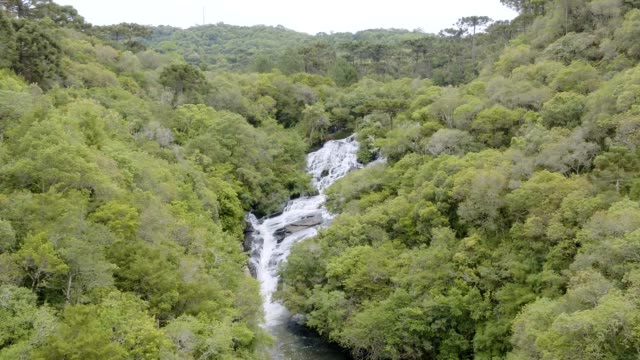 caracol falls in canela, rs, brazil - caracol stock videos and b-roll footage