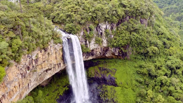 caracol verliebt sich in canela, rs, brasilien - bundesstaat rio grande do sul stock-videos und b-roll-filmmaterial
