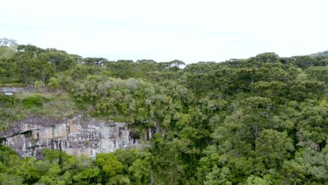 caracol falls' landscape in canela, rs, brazil - stato di rio grande do sul video stock e b–roll