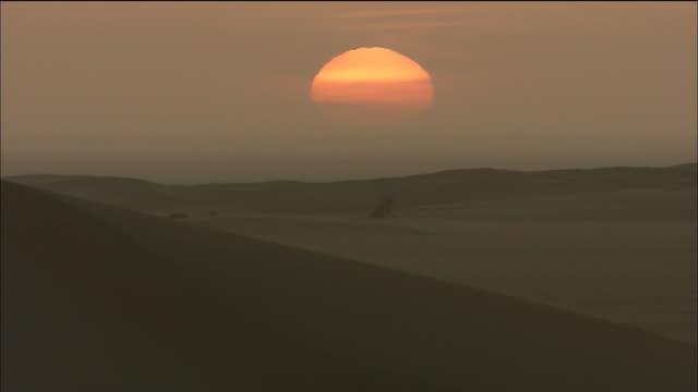 caravan camels in sahara desert - ニジェール点の映像素材/bロール